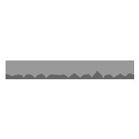 Wild Bunch Logo Gris